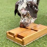 Dog Puzzle Toy - Trapdoor